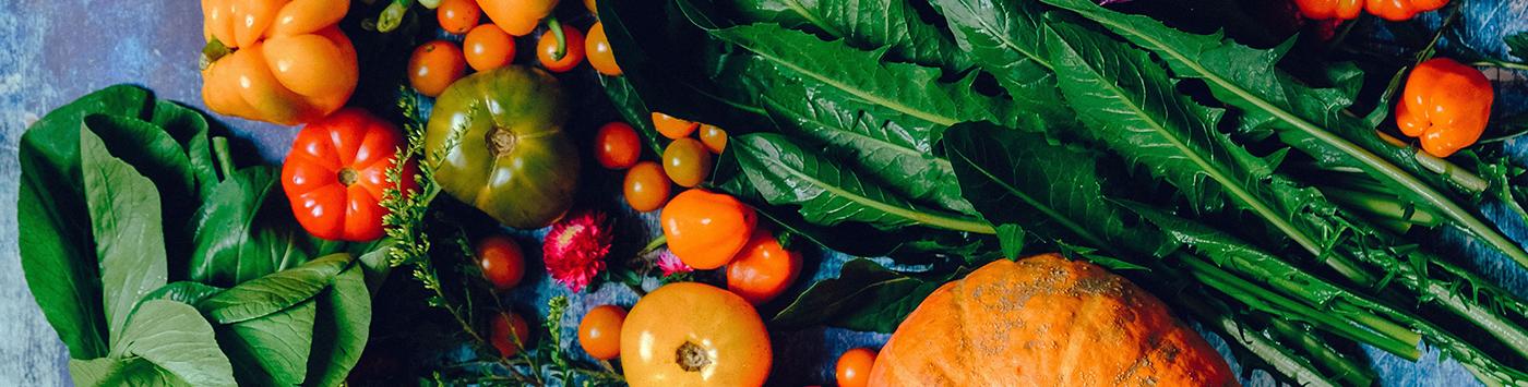 Soutenir la relocalisation de l'alimentation en Wallonie et en province de Luxembourg
